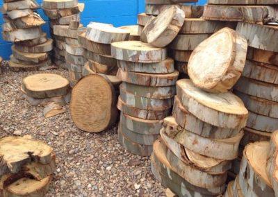 Eucalyptus Wooden Slices